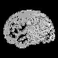 Closed-loop brain stimulation