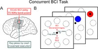 Concurrent control of a brain-computer interface and natural overt movements