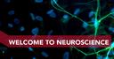 MSc Neuroscience in Freiburg